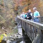 Brücke über die Gr.Mühl