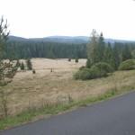Tschechische Steppe