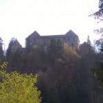6 Ruine Pürnstein