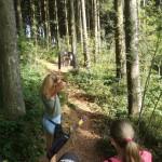13 stimmungsvoller Wald